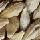 Trade Barley
