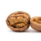 fo-walnut2