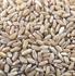 thumb_ce-wheat-durum2