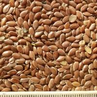 oi-flax-oil-brown2